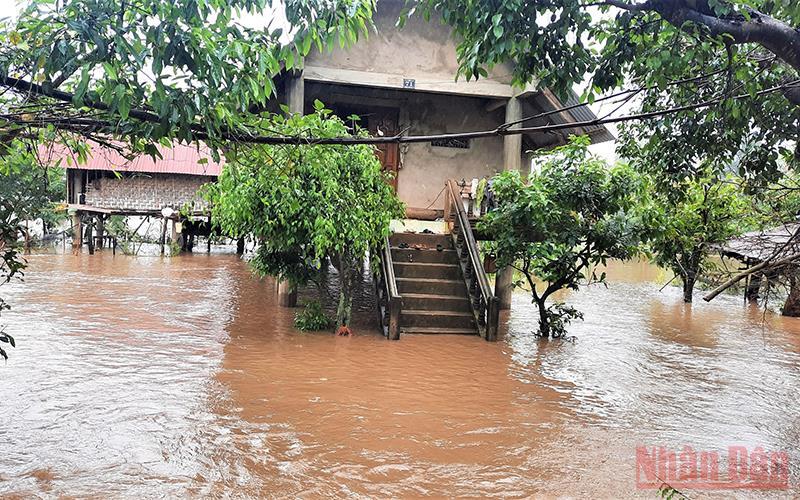 Mưa lũ gây ngập úng diện rộng trên địa bàn tỉnh Đắk Lắk