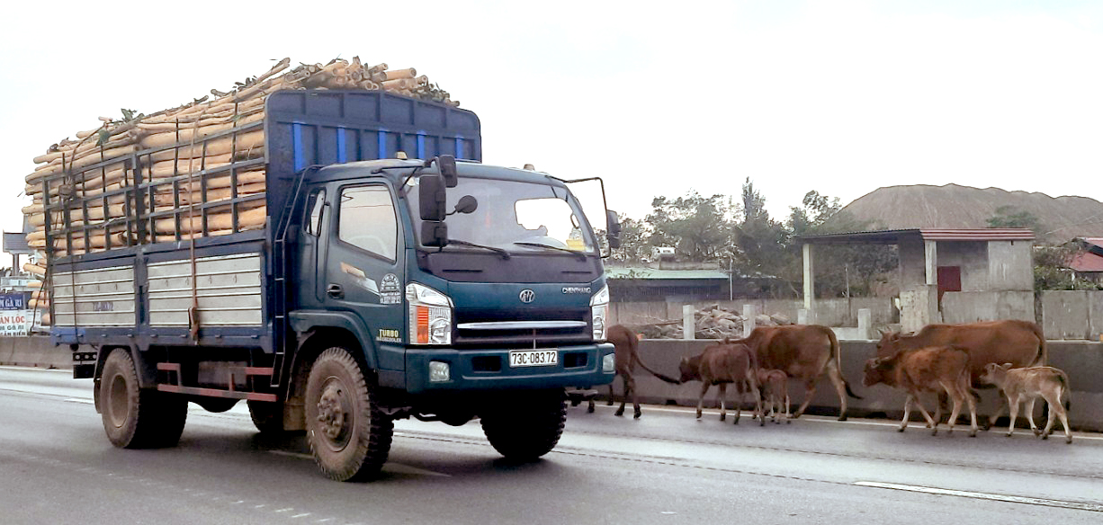 Vai trò của pháp luật trong việc bảo đảm trật tự, an toàn giao thông đường bộ ở Việt Nam hiện nay