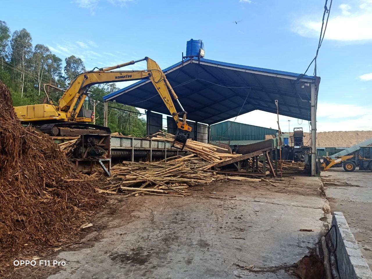 Nghi Sơn - Thanh Hoá: Vì sao các cơ sở chế biến gỗ dăm tại Cảng PTSC vẫn ngang nhiên hoạt động (Kỳ 2)?
