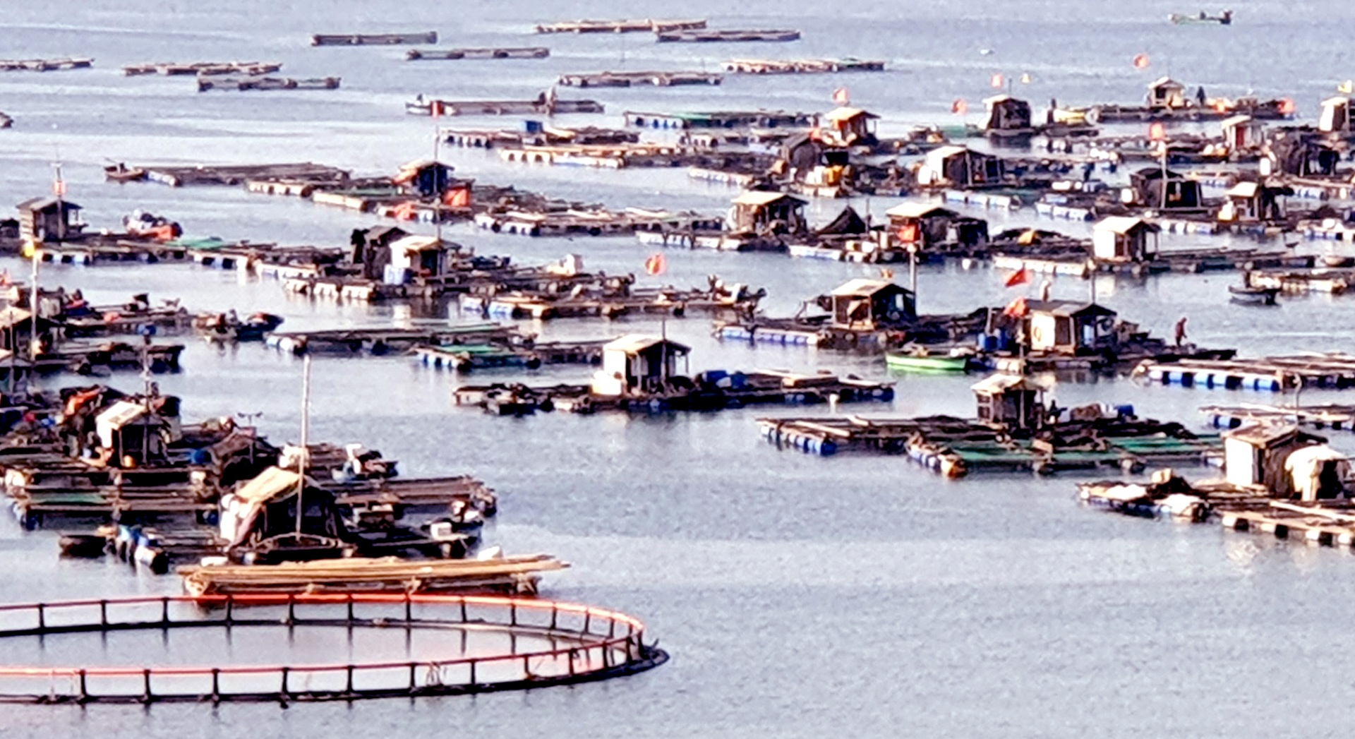"""""""8G"""" để phát triển Đồng bằng sông Cửu Long bền vững"""