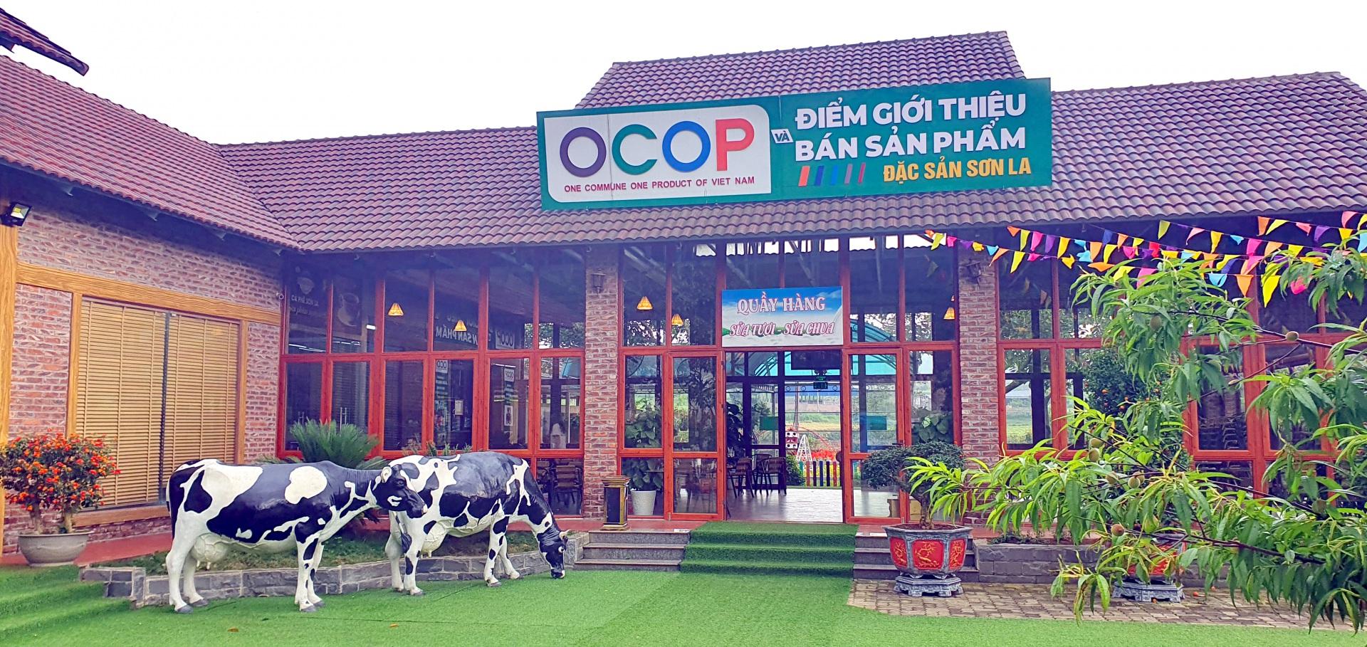 Đẩy mạnh chương trình OCOP có vai trò quan trọng thúc đẩy phát triển mạnh mẽ kinh tế nông thôn