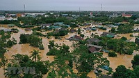 Bài học nào từ COVID-19 có thể áp dụng để giải quyết những thách thức về khí hậu và môi trường ở Việt Nam