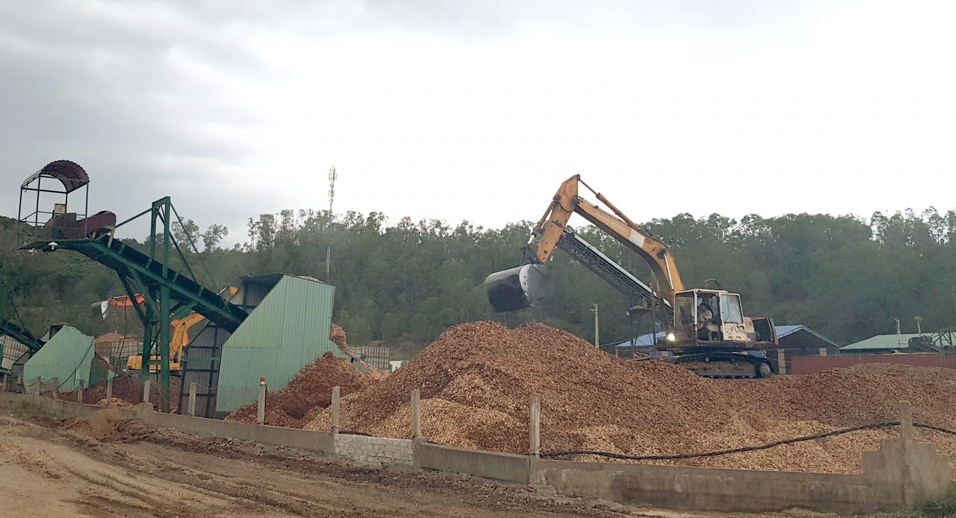 Tĩnh Gia - Thanh Hóa: Cần rà soát lại hoạt động sản xuất, kinh doanh gỗ dăm và kiên quyết xử lý những sai phạm (kỳ 2)