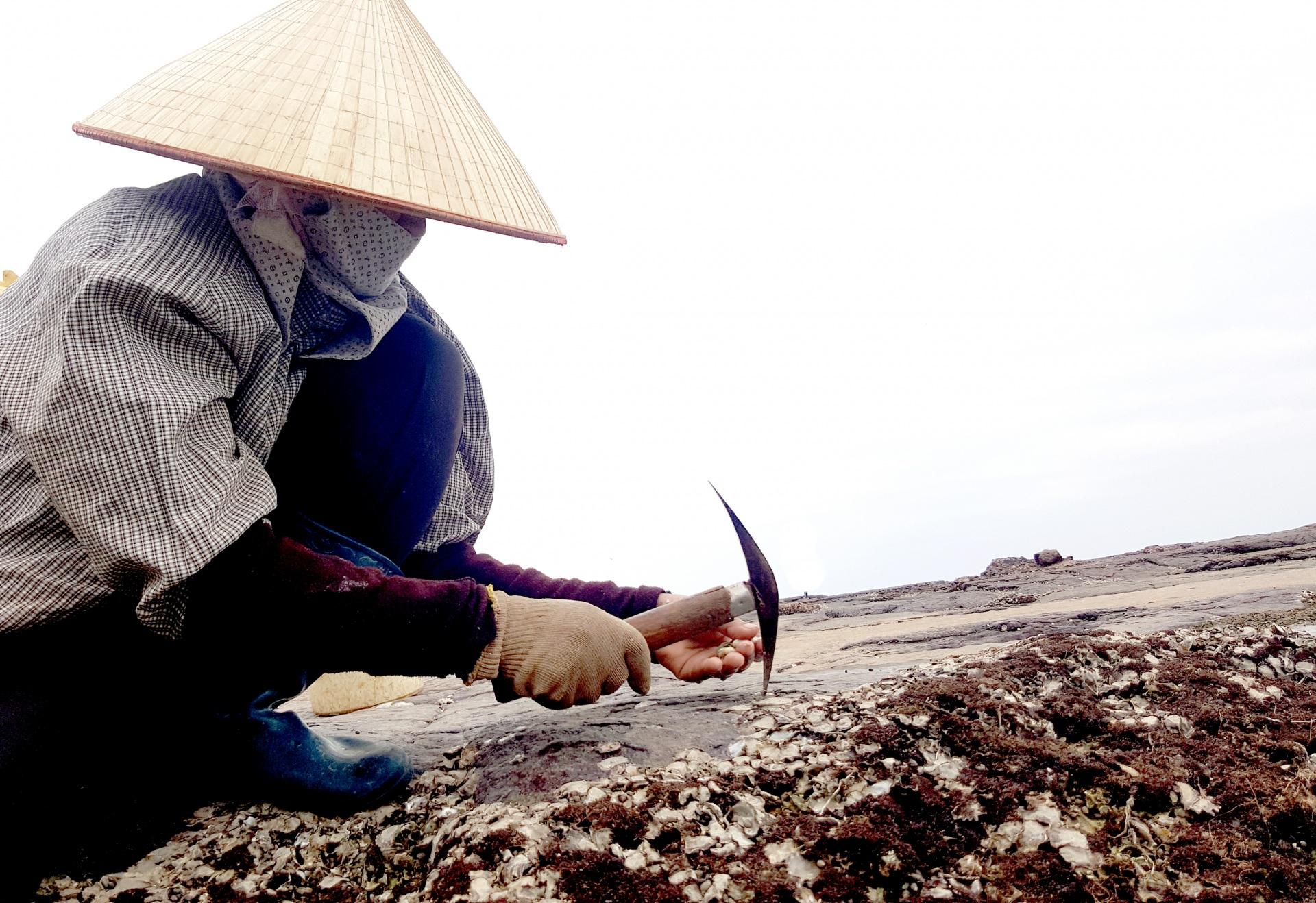 Đập Hàu trên biển Đồ Sơn