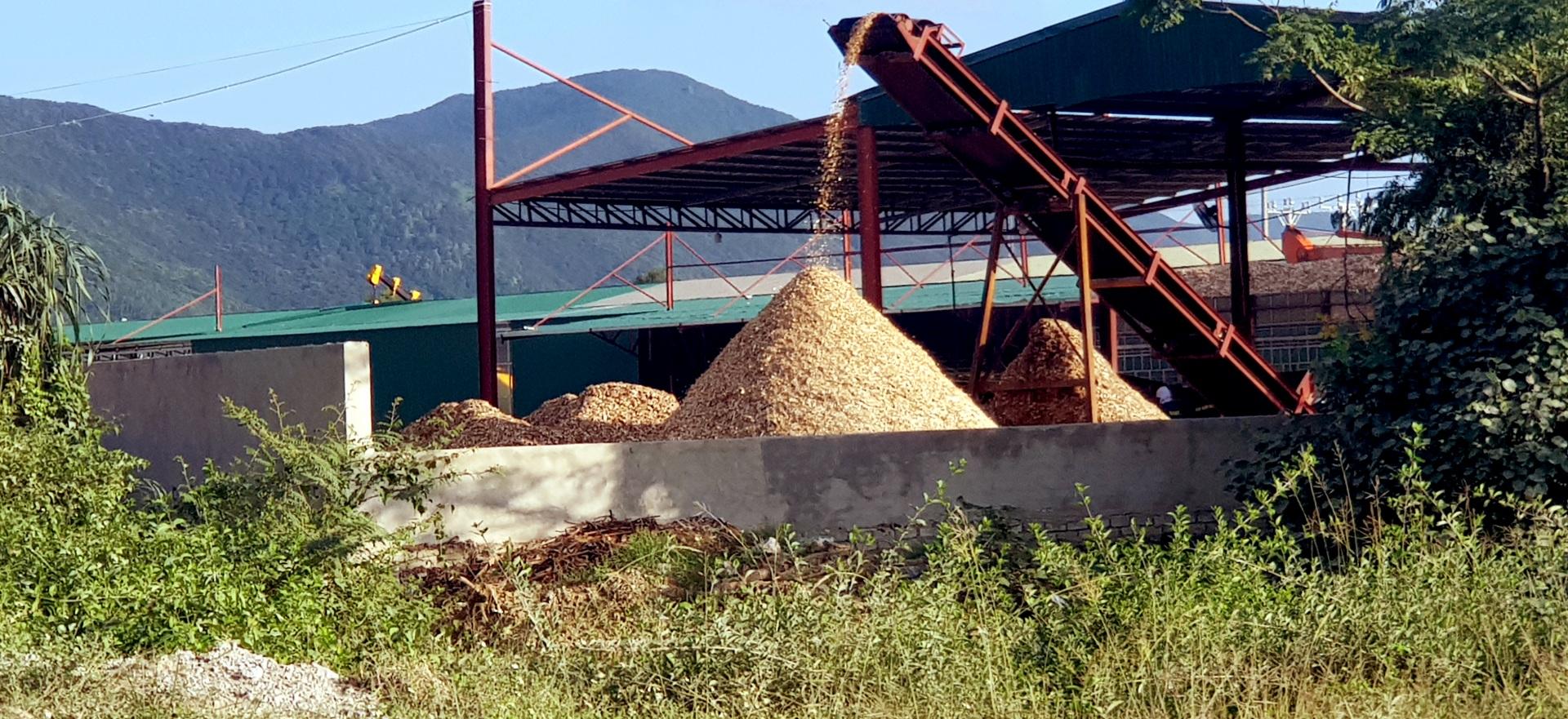 Tĩnh gia - Thanh hóa: Cần rà soát lại hoạt động sản xuất, kinh doanh gỗ dăm và kiên quyết xử lý những sai phạm (Kỳ 1)